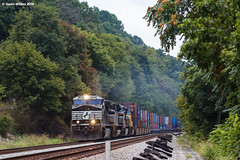 Metal and Wood (nrvtrains) Tags: intermodal christiansburgdistrict unionpacific narrows norfolksouthern 236 virginia unitedstates us