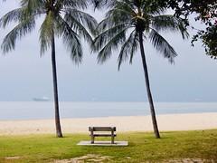247/365: storm's a comin' (Michiko.Fujii) Tags: eastcoast morningcycle dailycommute eyesonthehorizon beforethestorm coasts coastlines coloursoftheworld onthebeach singaporeskies singaporelandscapes