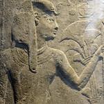 Ancient Egypt / Ancient New thumbnail