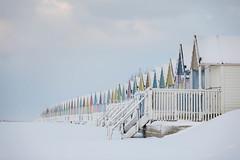 294A4426.jpg (merseamillsy) Tags: snowbeachhuts winter