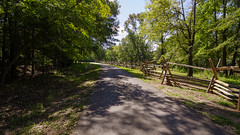 Country Roads II (rschnaible) Tags: musgrove mill state historical site revolutionary war independence outdoor landscape the south carolina clinton history country road fence woods