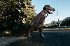 Oregon Dinosaur (La Chachalaca Fotografía) Tags: dinosaur dino monster roadsideattraction tyrannosaurus canon g1xmarkiii surreal dinosaurio dinosaure