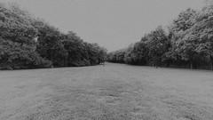 Travellers Rest Plantation Nashville IV (rschnaible (On Holiday)) Tags: travellers rest plantation nashville tn tennessee the south landscape grounds bw black white monotone