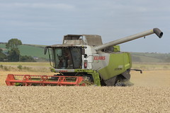 Claas Lexion 630 Combine Harvester cutting Winter Wheat (Shane Casey CK25) Tags: claas lexion 630 combine harvester cutting winter wheat grain harvest grain2018 grain18 harvest2018 harvest18 corn2018 corn crop tillage crops cereal cereals golden straw dust chaff county cork ireland irish farm farmer farming agri agriculture contractor field ground soil earth work working horse power horsepower hp pull pulling cut knife blade blades machine machinery collect collecting mähdrescher cosechadora moissonneusebatteuse kombajny zbożowe kombajn maaidorser mietitrebbia nikon d7200