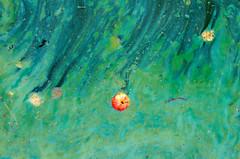 #2 Краски Осени / Сolors of Autumn (Yuri Balanov) Tags: autumn colour fullcolor colors river nature water urban urbannature moscowcity pentaxk5iis pentaxrussia pentaxda18135mm pentaxricoh cityautumn cityscape pond laguna
