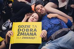 _MG_2361 (Otwarte Klatki) Tags: demonstracja