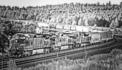 TransCon Movement (Woodypug) Tags: summit arizona divide coconino county bnsf blackwhite locomotive train upgrade eastbound landscape railroad route66 trees