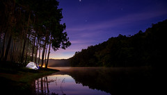Landscape of Night camping with stars in Pang ung (anekphoto) Tags: camping tent camp thailand forest nature adventure sky travel landscape pine background hiking outdoor night sunset tourism north summer woods light park holiday lifestyle campfire lake vacation mountain leisure activity river morning stars family tree season group scene fire recreation trip trees green pangung maehongson chiangmai star blue