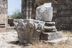 2018/07/09 12h42 ruines de Volubilis (Valéry Hugotte) Tags: 24105 antiquité maroc volubilis canon canon5d canon5dmarkiv chapiteau colonne romain ruines fèsmeknès ma
