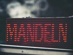 2018:08:26 16:38:57 - Mandeln - Start in die Weihnachtszeit? - Ostsee - Schleswig-Holstein - Deutschland (torstenbehrens) Tags: mandeln start die weihnachtszeit ostsee schleswigholstein deutschland m42f8500mm zhongyi objektiv turbo ii efm43 wecellent m42ef adapter