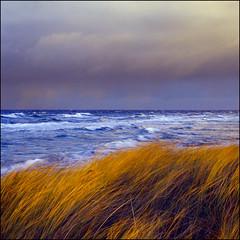 Winter Sea - Kodak E100 VS (magnus.joensson) Tags: sweden swedish skåne måkläppen beach shore winter december sunset sea rolleiflex 35 6x6 medium format carl zeiss tessar 75mm e6 kodak e100vs 120 ektachrome professional color slide exp2007 epson v800 scan