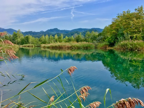 Side pocket of the river Inn near Oberaudorf, Bavaria, Germany