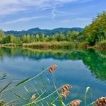 Side pocket of the river Inn near Oberaudorf, Bavaria, Germany thumbnail