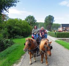 's Heerenhoek (Omroep Zeeland) Tags: genieten op de paardenkoets