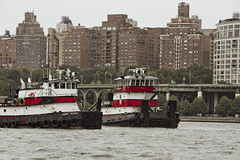 r_180909121_beat0075_a (Mitch Waxman) Tags: 2018greatnorthrivertugboatrace hudsonriver manhattan tugboat workingharborcommittee newyork