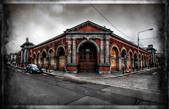 IMG_3696_pe (shay connolly) Tags: dublin city council wholesale fruit vegetable and flower market