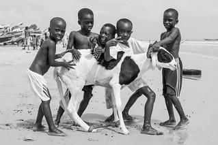 Tabaski Festival (Eid al-Adha) in Senegal