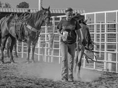 Done For the Day (clarkcg photography) Tags: arena cowgirl horse work rope cattle drink softdrink dust blackwhite blackandwhite bw portrait