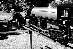 Train man (halifaxlight) Tags: canada novascotia annapolisroyal windsor trecothiccreekandwindsorrailway modelrailway steamengine railway man enthusiast working pushing sunny summer bw