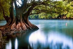 30 segundos (Momoztla) Tags: mexico momoztla cuamecuaro michoacan lago larga exposicion amanecer