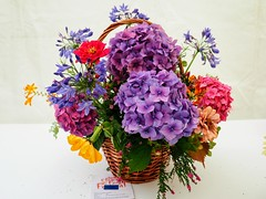 Flower Basket. (Flyingpast) Tags: flowershow dundee scotland scottish flowers arrangement pretty basket display colour petals