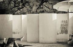 Vacation (marcus.greco) Tags: vacation summer legs blackandwhite seppia portrait conceptual umbrellas man