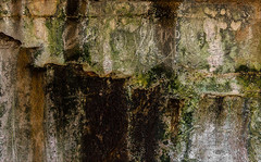 Consternation (Junkstock) Tags: abstraction abstract chaotic chaos concrete concretography dark darkness decay decayed green oregon textures texture wall weathered stevens ftstevens