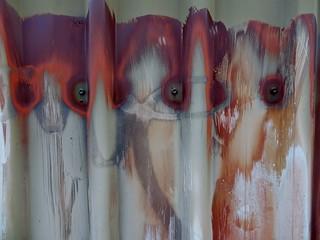 Eyes on a Fence