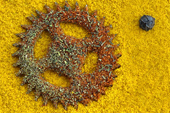 Cog (andycurrey2) Tags: macromondays cogwheel cog macro pepper chilli turmeric dill food spice art yellow red fun colours textures