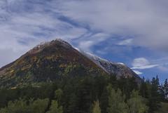 Lomseggen (tskogset) Tags: lomseggen lom oppland norway nature landscape pine birch forest flickr autumn color mountain sky clouds bluesky pentaxk1 hdpentaxdfa28105mmf3556eddcwr