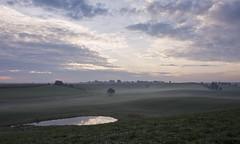 Morgens (*MH*) Tags: landschaft landscape herbst autumn nebel dunst fog foggy wiese meadow feld field teich soll himmel sky sonnenaufgang sunrise stargarderland mecklenburgischeseenplatte mecklenburgvorpommern mv