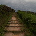 En el camino