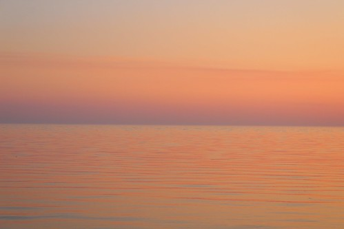pink sea.