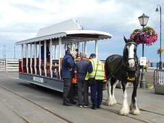 Douglas Bay Horse Tramway: Amby and Car 45, Derby Castle (27/07/2018) (David Hennessey) Tags: douglas bay horse tramway amby car 45 derby castle