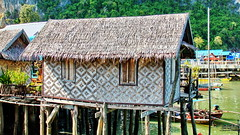 House with garden (gerard eder) Tags: world travel reise viajes asia southeastasia thailand phuket phangngaisland house floating village floatingvillage landscape landschaft paisajes outdoor
