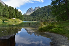 Reflections of the mountains (jbourne5) Tags: tree greens alps swissalps views mountains lake