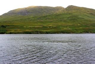 Le Connemara au niveau de Kyllary Fjord (Comté de Galway, Irlande)