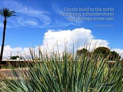 235/365 - Daily Haiku: Clouds (James Milstid) Tags: dailyhaiku haikuaday haiku haiga poetry jemhaiku clouds thunderstorm thunderhead rain bluesky