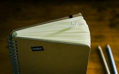 hello! (HW111) Tags: bunny cute hello paper pencilcrayons spiralnotebook tabs words