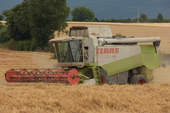 Claas Lexion 460 Combine Harvester cutting Winter Wheat (Shane Casey CK25) Tags: claas lexion 460 combine harvester cutting winter wheat castletownroche grain harvest grain2018 grain18 harvest2018 harvest18 corn2018 corn crop tillage crops cereal cereals golden straw dust chaff county cork ireland irish farm farmer farming agri agriculture contractor field ground soil earth work working horse power horsepower hp pull pulling cut knife blade blades machine machinery collect collecting mähdrescher cosechadora moissonneusebatteuse kombajny zbożowe kombajn maaidorser mietitrebbia nikon d7200