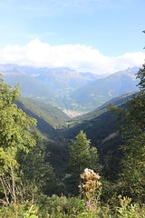 IMG_1514 (losting75) Tags: montagna rifugio sandro occhi val paghera vezza doglio vallecamonica valledeisegni parco adamello brenta lombardia