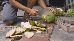 Coconut Cutting (Shane Hebzynski) Tags: man knife hand cutting hacking coconut