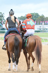 "2018-08-31 (70) r5 Kevin Gomez on #5 Joyful Noise (JLeeFleenor) Tags: photos photography maryland marylandracing timonium mdstatefair fair horseracing outside outdoors jockey جُوكِي ""赛马骑师"" jinete ""競馬騎手"" dżokej jocheu คนขี่ม้าแข่ง jóquei žokej kilparatsastaja rennreiter fantino ""경마 기수"" жокей jokey người horses thoroughbreds equine equestrian cheval cavalo cavallo cavall caballo pferd paard perd hevonen hest hestur cal kon konj beygir capall ceffyl cuddy yarraman faras alogo soos kuda uma pfeerd koin حصان кон 马 häst άλογο סוס घोड़ा 馬 koń лошадь"