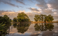 Evening (cliveg004) Tags: pirton pirtonpool worcestershire evening sunset clouds trees lake reflections pool water sky colour countryside rural landscape nikon d5200