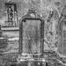 Cementerio Sineu 2