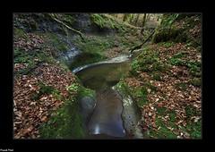 Marmites sur le ruisseau de la Bonneille - Flagey (francky25) Tags: marmites sur le ruisseau de la bonneille flagey franchecomté doubs rivière étiage