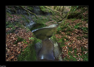 Marmites sur le ruisseau de la Bonneille - Flagey