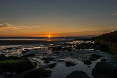 Still day (ARTUS8) Tags: flickr strand buhne meer nikon1635mmf40 landschaft nikond800 sonnenaufuntergang sonnenuntergang sunset felsen rocks ocean