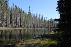 A long and narrow unnamed lake (rozoneill) Tags: lassen volcanic national park california hiking twin lakes upper lower cluster pacific crest trail peak echo lake