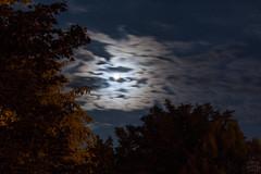 Moon & Saturn / @ 55 mm / 2018-08-21 (astrofreak81) Tags: saturn moon luna mond planet stars tree light night sky dark konjunktion konstellation dresden 20180821